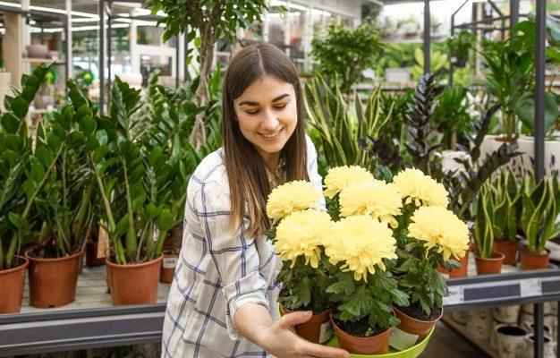 Foto de Flor creado por pvproductions - www.freepik.es